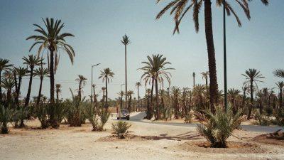 DMP-Cities-Marrakech-6