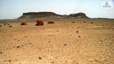 DMP-Harsh Desert-Jbel Lemdaouar-7