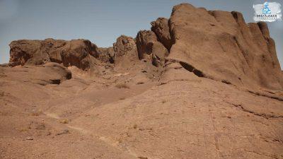 DMP-Harsh Desert-Oasis-1