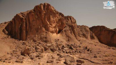 DMP-Harsh Desert-Oasis-4