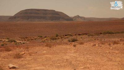 DMP-Harsh Desert-Oasis-8
