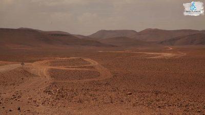 DMP-Harsh Desert-Oasis-9