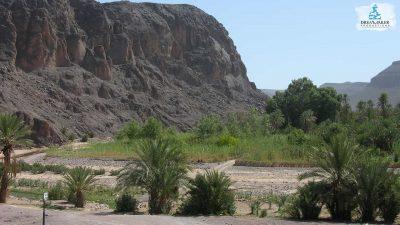 DMP-Mountains-Oasis-10