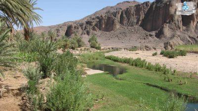 DMP-Mountains-Oasis-6