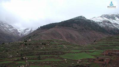 DMP-Mountains-Snow-6