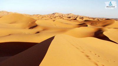 DMP-Sand Dunes-Merzouga1